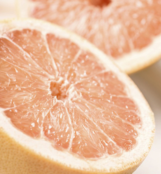 Grapefruitovník ´RED BLUSH´ 30-40 cm, kont. 2 l